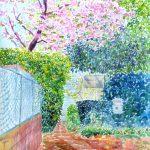 八重桜に誘われて:横浜のYAMATE美術セミナーという教室の入り口で描きました。ちょうど満開を迎えていて、天気も絵を描くにはぴったりでしたね。