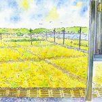 北浦湖畔駅から:茨城にある駅です。ここからは一面の黄色い稲穂が見えました。