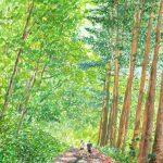木漏れ日の道:富良野で描きました。道の両側にある林が、いい感じの木漏れ日を作っていました。