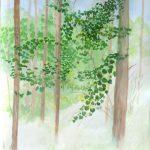 霧の中:富良野で描きました。山の上だと7月でも寒かったですね。