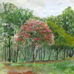 一本だけ色づいたモミジ:地元の自然公園で描きました。紅葉の時期にはまだ早かったのですが、この木が一本だけ色づいていました。