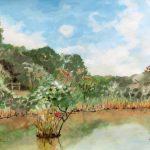 カワセミの来る池:地元の自然公園で描きました。ここにはときどきカワセミが来ます。池の中にある木の枝に止まっているのが、おわかりでしょうか。