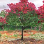 色づくモミジ:地元の自然公園で描きました。木の半分まで紅葉が進んでいましたが、寒くて途中で切り上げ。