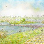 春の相模川:相模川の上流です。釣りをしている人がいました。