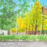 イチョウ並木:横浜の山下公園で描きました。日陰で寒かったですが、綺麗に色づいていましたよ。