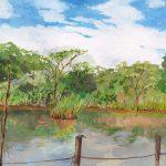 トンボも来る池:地元の自然公園にある溜池のほとりで描きました。途中でシオカラトンボが画板に止まりましたよ。