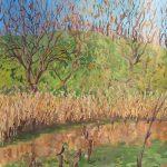 カワウも来る池:地元の自然公園で描きました。カワウが杭に止まっていましたよ。