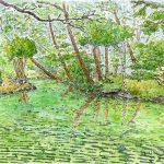盛岡城址公園:弟の結婚式で盛岡を訪れた際に描きました。新緑の季節ですね。
