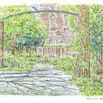 英国風の庭で:港の見える丘公園の「イングリッシュローズの庭」で描きました。