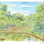 里山の五月:地元の自然公園で描きました。木々の緑や水田はきらきらと。