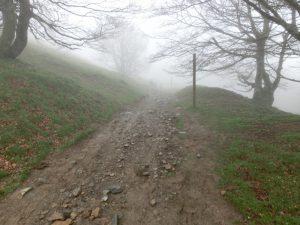 霧のかかった山道
