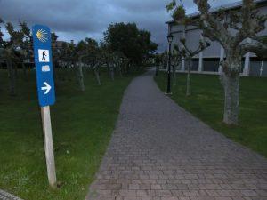 公園の中を通る