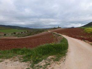 赤土の畑の中を通る