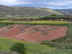 畑に作られた世界地図