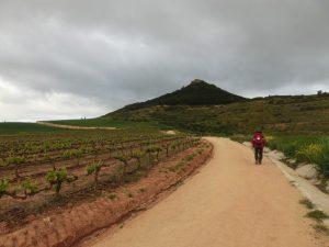 目の前にはピコ・デ・モンハルディン山