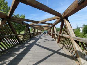 木の橋を渡って