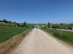 国道の横の巡礼路