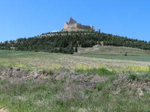 丘の上の城跡