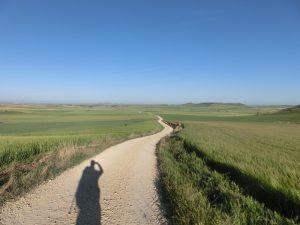 僕の影とずっと続く巡礼路