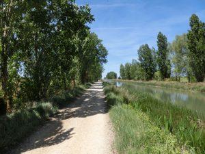 運河沿いを歩く
