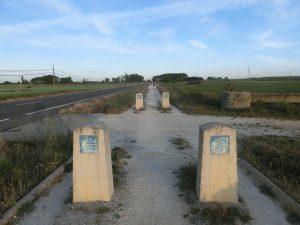 無数に並ぶ石碑