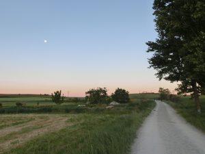 巡礼路と満月