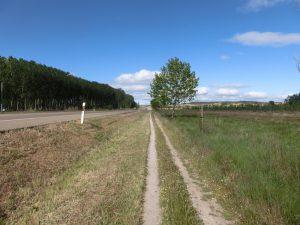国道沿いの道を歩く
