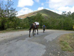 馬と一緒に歩く巡礼者