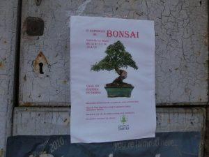 盆栽の展示会のポスター