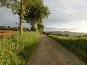 朝日の中を歩く