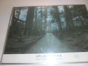 熊野古道の写真パネル