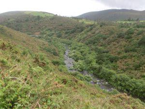 峡谷には川が流れている
