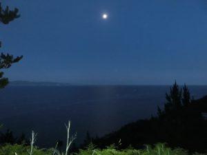 月の光が水面に映っている