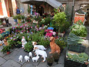 園芸洋品店