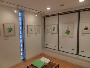 二階の展示