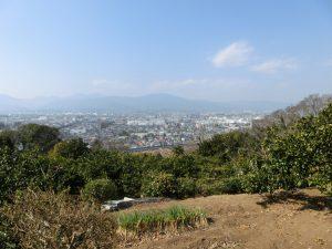小田原市街と箱根連山