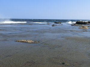 海になっていた