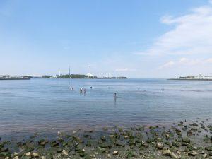 八景島と潮干狩りをする人たち
