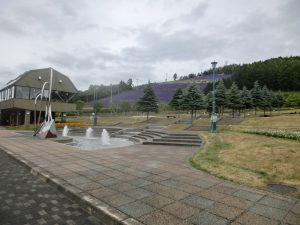 町営のラベンダー園(帰りに撮った写真)