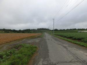 農道を歩く