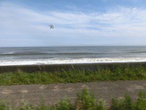 電車は海沿いを走る