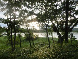 夕日と湖面