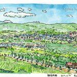 ふらのワイン工場から:富良野の街が一望できました。