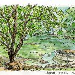 鳥沼公園:ここの池ではボートが乗れます。