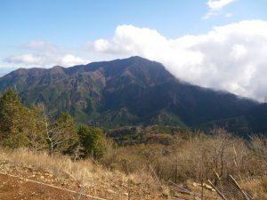 大山が見えた